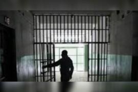 من داخل سجون التعذيب السرية في سوريا: كيف سحق بشار الأسد المعارضة